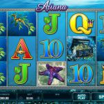 A New Player's Guide to Online Slots: Understanding the Basics