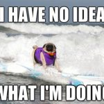 8 Memes that Illustrate a Typical Surfer Behavior