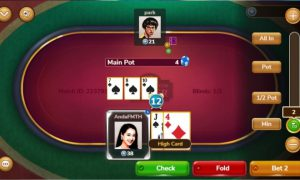Beginners' Guide To Poker - How To Be An Instant Pro Player