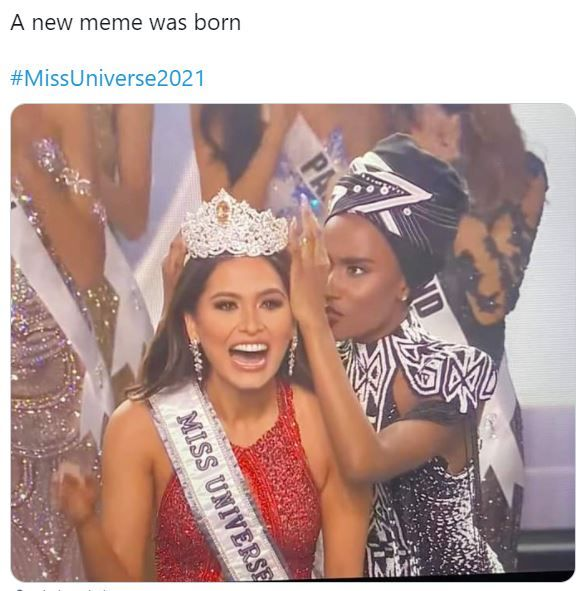 Miss Universe 2021 - Crowning funniest memes on Twitterverse